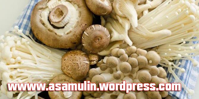 asamulin-jamur-masak